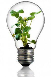 Verte Total Direct Energie