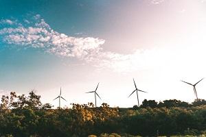 Électricité verte GreenPeace