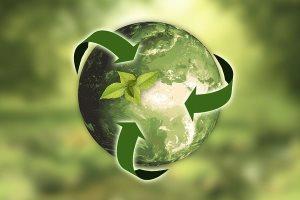 neutre-en-carbone